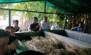 Image of Demonstration & collection of Vermicompost