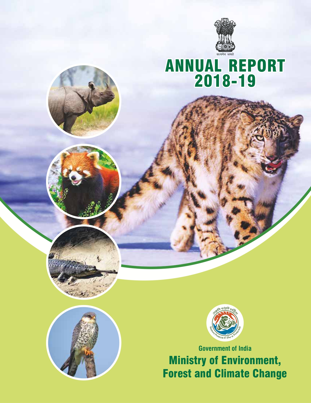Image of cover of Annual Report 2018-2019
