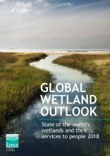 Image of Global Wetland Outlook