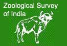 Image of The Zoological Survey of India