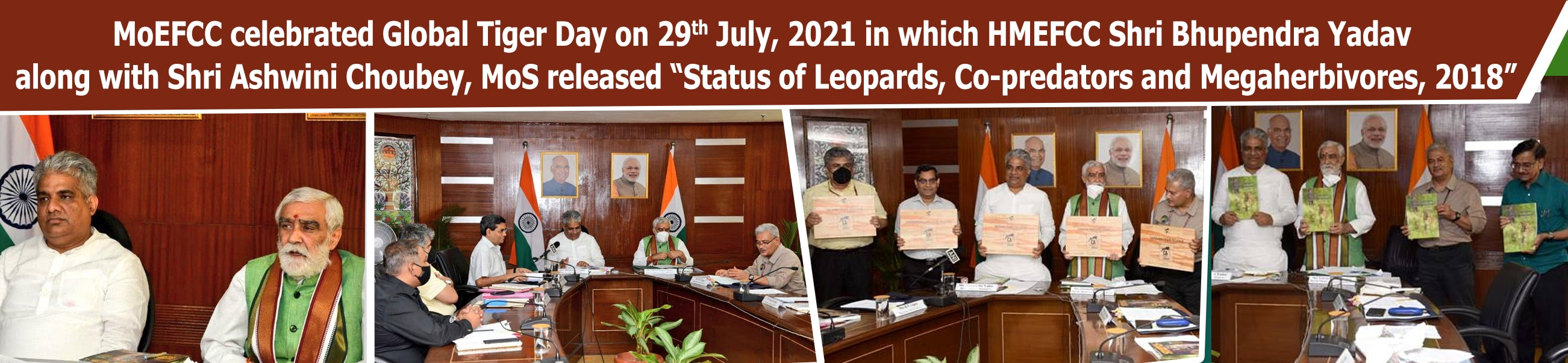 Image of Status of Leopards